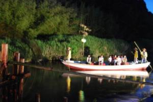 徳島の蛍祭り2018